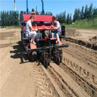 田耐尔2ZBX-2型油用牡丹专用移栽机,高品质节约成本,可按客户要求加工定制