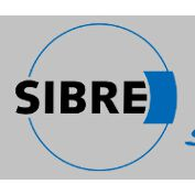 上海轩盎优势供应- SIBRE USB3-I 摩擦片