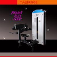 【山东宁津环宇】二头肌三头肌训练器 HY-6806-6807健身房必备器械