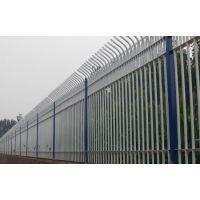 供应河北安平包塑围栏多少钱一平米?