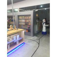 泰诚机器人\\\\迎宾机器人 深圳市机器人厂家 批发直销餐厅机器人