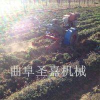 拖拉机带的家用地瓜挖掘机报价 全自动甜菜收获机图片 圣嘉促销
