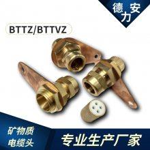 矿物质电缆头 BTTZ接头 YTTW终端1*95mm2