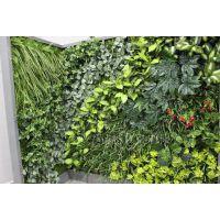 工程定制 仿真植物 仿真植物墙 植物墙装饰  人造植物仿真叶子