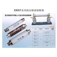 XRNT1-12(国外型号为:SDLAJ-12)高分段能力高压限流熔断器