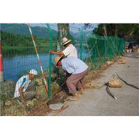 鱼塘养殖圈地铁丝网 框架护栏网厂家