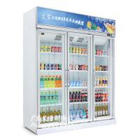 南充 达州 雅安 阿坝便利店单门、两门、三门饮料柜 水果冷柜 饮料冷藏柜价格
