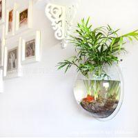 厂家直销 亚克力有机玻璃鱼缸 壁挂式鱼缸 透明创意亚克力鱼缸