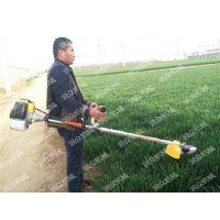 二冲程强劲有力割草机 人工数倍割灌机 圆形锯齿刀片割草机 润众