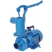 供应高扬程 手压式喷灌离心泵 电机泵--WB40-1100