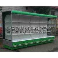 厂家供应水果风幕柜饮料奶制品冷藏保鲜展示柜