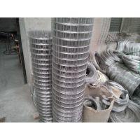 2毫米不锈钢电焊网一卷多少钱? 201材质不锈钢电焊网