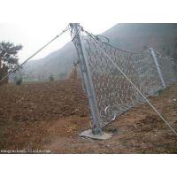 陕西贵州不锈钢RXI-200被动防护拦石网厂家