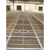 厂家出售养花网 移动苗床网 苗床网片生产厂家