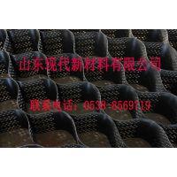 TGGS150-400高强新型防冲刷PE土工格室供应厂家山东现代