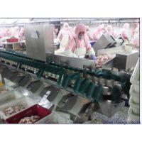 青岛欧亚德全自动分级称--家禽、海参、海鲜、畜牧业