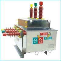 ZW27-12户外高压真空断路器 电动带隔离厂家