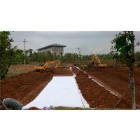 湛江天然钠基膨润土防水毯制造商
