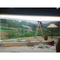 大型壁画 3D画 荧光画 彩绘 墙绘 纯手绘油画定制