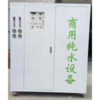 纯水设备 水处理设备0.5T/H1.0T/H单双级RO反渗透纯净水设备