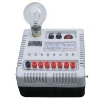 供应灭鼠器_捕鼠器_电子灭鼠捕鼠器WH001型