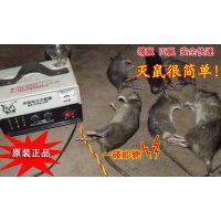 老鼠捕捉器效灭鼠器电猫捕鼠器/电子驱鼠器/长沙环保电子灭鼠器