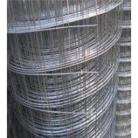耀进网业生产销售,电焊网,浸塑电焊网
