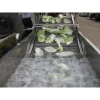 诸城市鹏启食品机械全自动小型蔬菜清洗机