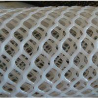 白色绿色养鸡养鸭大棚PE塑料平板网格批发 冲洗方便环保卫生 1-5cm孔安平上善