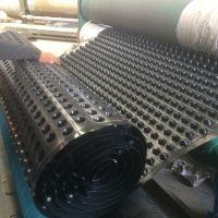 1.6cm高塑料排水板 1500克HDPE排水板山东华龙厂家