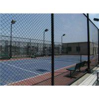 球场围栏网零售、球场围栏网、中泽丝网
