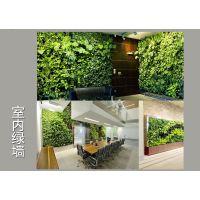 植物墙,垂直绿化,立体绿化