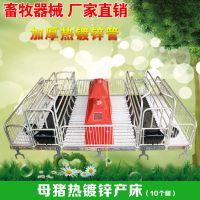 河北盛润直销鸡西猪双体防挤奶头床 畜牧猪养殖设备