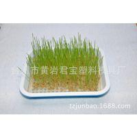 厂家直销双层芽苗菜育苗盘 双层种植盘 育苗盘 家用芽苗菜盆