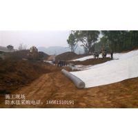 焦作防水毯厂家公供应施工简单18661310191