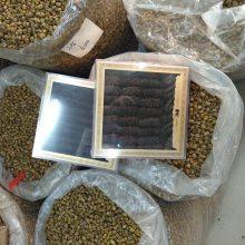 优质海参批发,海参药用方法,海参市场价格