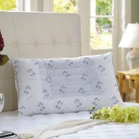床上用品决明子磁条保健护劲枕芯枕头特价