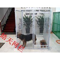 供应大型宠物笼/狗笼子批发/大型狗笼价格/不锈钢管宠物笼