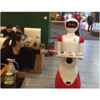 餐厅服务机器人 批发机器人厂家 深圳市泰诚机器人L500*W320*H1600(mM)