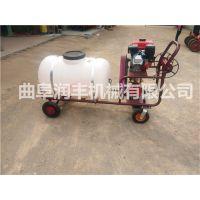 高压气雾喷雾器型号 汽油机耐用的高压气雾喷雾器 润丰