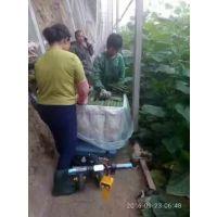 厂家批发大棚蔬菜拉菜车 工业运输平板车仓储电动搬运车