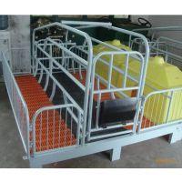 畜牧/养殖业机械母猪产床猪产床养猪设备漏粪板母猪产床价格