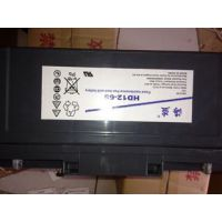 美国海盗铅酸蓄电池HDW12-12价格