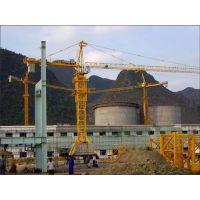 黄浦塔吊电机、武汉博兴力机电(已认证)、YZRDW塔吊电机