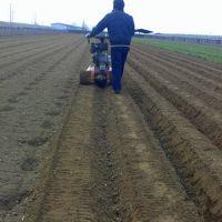 圣通新款园林管理机 莴苣培土开沟机 黄姜施肥开沟机