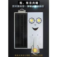 鑫日光15W双灯头COB一体化太阳能LED路灯LED亮化工程系列路灯产品