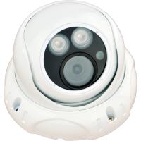 厂家 蓝天翠鸟200万高清网络半球摄像机 安防摄像头 支持手机远程控制监控