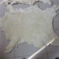 源头供应 中高密度白色澳洲绵羊皮 羊皮 皮料 毛长2公分 包邮