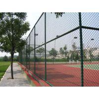 供应4米高球场防撞网弹性强/绿色焊接高尔夫球场钢丝防护网/排球场防撞隔离网