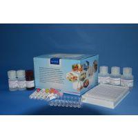 β-内酰胺类快速检测试纸条